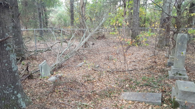 Roberts Family Cemetery, Walton County, Georgia, before 2016 cleanup