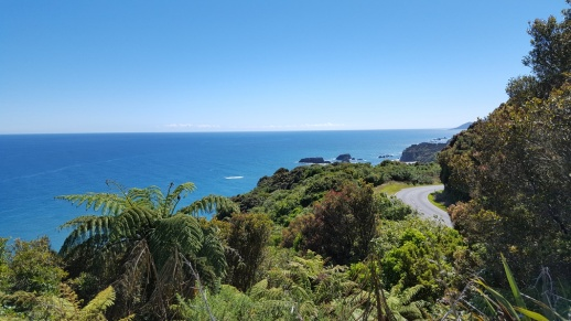 Knights Point Lookout, West Coast