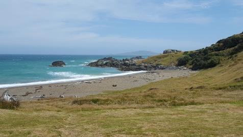 Southern Coast of New Zealand