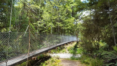 Swing Bridge on hike - there were many!